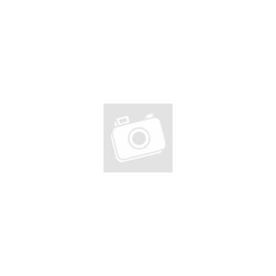 ProInstrument AnA40K INOX Heating IPARI 2 Literes 60W ULTRAHANGOS TISZTÍTÓ GÉP + MELEGÍTŐ FUNKCIÓVAL 20-80°C HŐFOKSZABÁLYZÓS MOSÓ