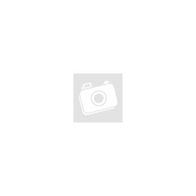 ProInstrument DmaX Plus PROFI 230/12V KÜLTÉRI / BELTÉRI 250m2 ULTRAHANGOS EGÉRRIASZTÓ PATKÁNYRIASZTÓ PIEZO ELEKTROMOS RÁGCSÁLÓRIASZTÓ 3 év GARANCIA